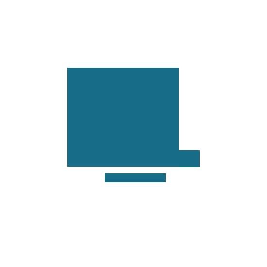 Logo Braiconf